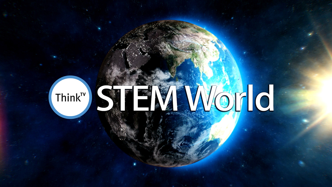 Survive the End of Summer with STEM World